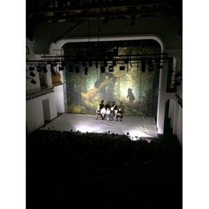 """Спектакль """"Ромео и Джульетта. Киндерсюрприз"""" фото"""