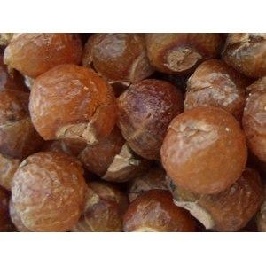 Народное средство   Мыльные орехи фото