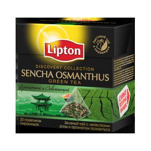 Зелёный чай в пирамидках Lipton     Sencha Osmantus фото