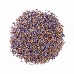 Лекарственные травы  Лаванда фото