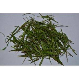 Травяной чай AliExpress Herbal Tea Bamboo leaf  organic (листья бамбука органического) фото