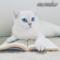 memiko аватар