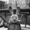 Xonix аватар