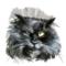 Valeriya_63 аватар