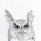 dva_kryuchochka аватар