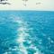 LLera_L17 аватар