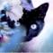 TatianaAks аватар