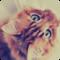 Natochka Zolotova аватар