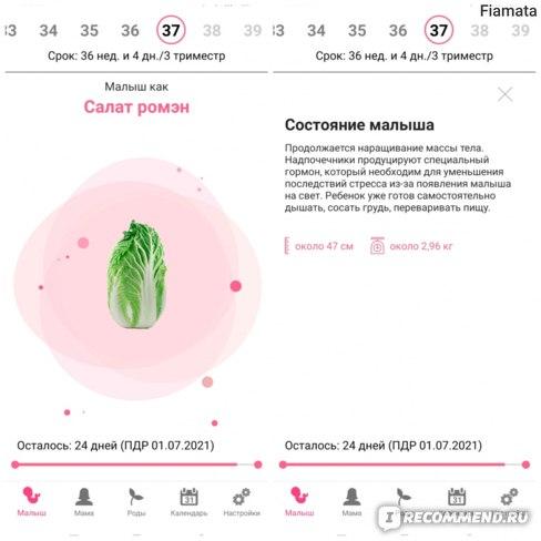 Компьютерная программа Счастливая беременность  фото
