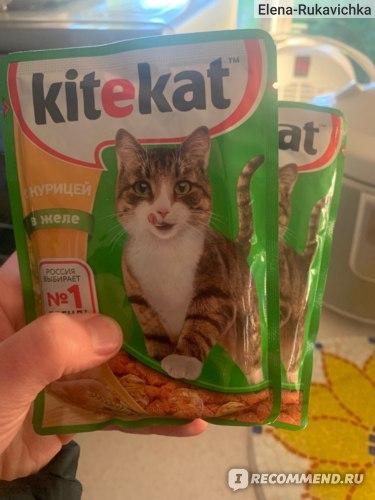 Всем известный корм КитеКэт, продается повсюду