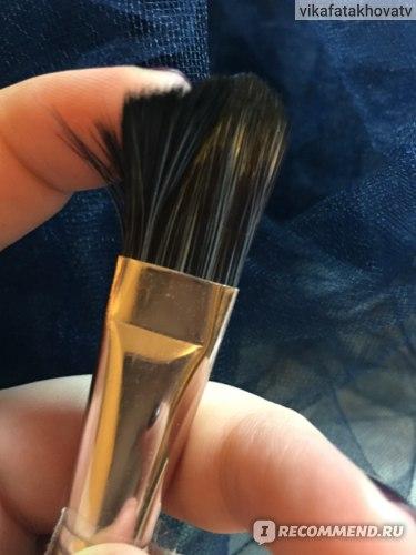 Кисти для макияжа Rosalind MakeUp Brushes 20 штук фото