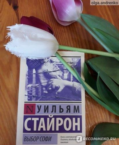 Выбор Софи. Уильям Стайрон фото