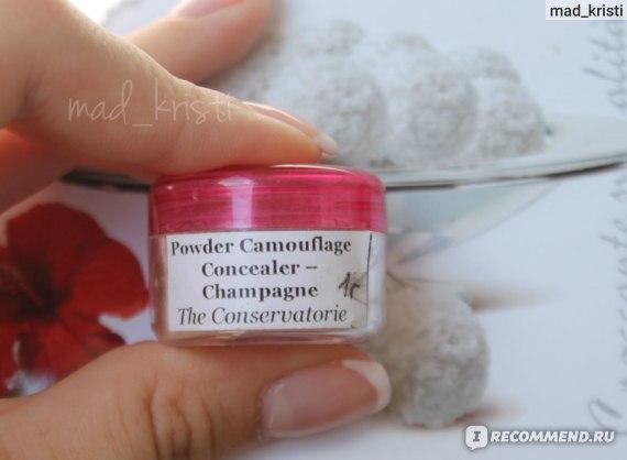 Champagne Concealer