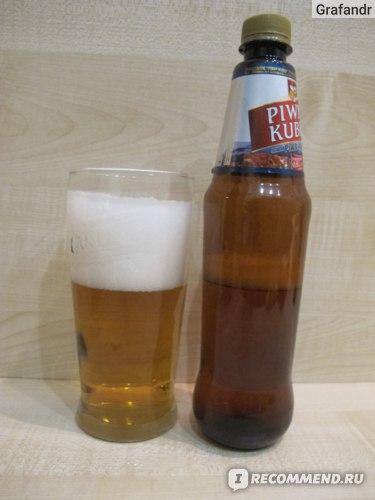 "Пиво Оболонь Piwny kubek ""Пивной кубок"" фото"