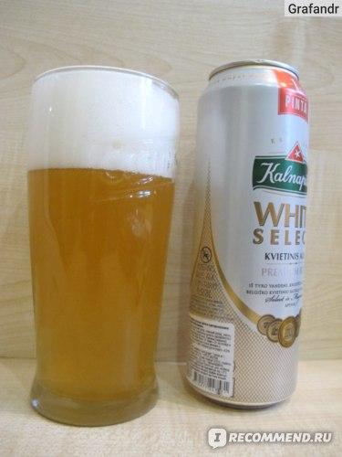 Пиво Kalnapilis White Select фото