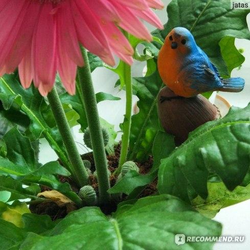 Украшение Садовое 4,5 х 4,8 см ООО Бэст Прайс фото