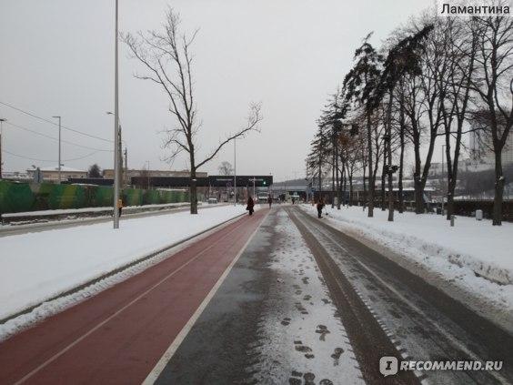 Аквакомплекс Лужники, Москва фото