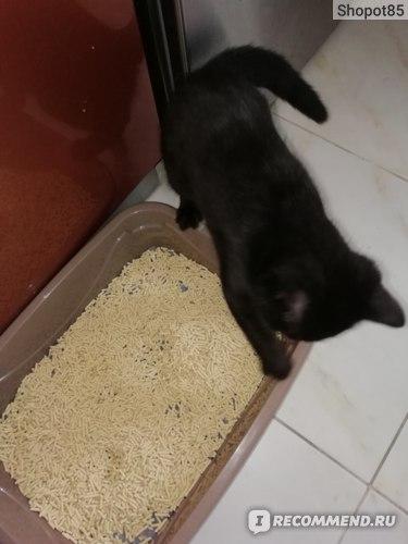 Наполнитель для кошачьего туалета Betty Cat Силикагелевый