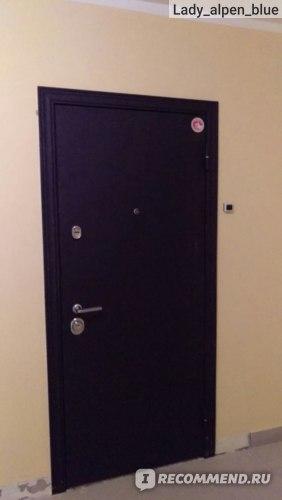 Двери Торекс фото