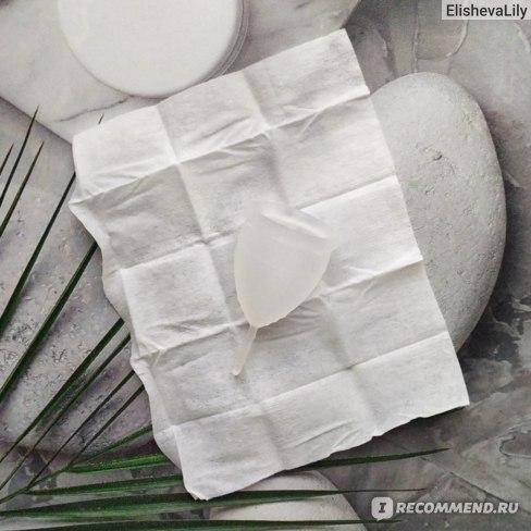 Очищающие салфетки для менструальной чаши Lunette Cupwipe Menstrual Cup Cleanser On The Go 10 Wipes