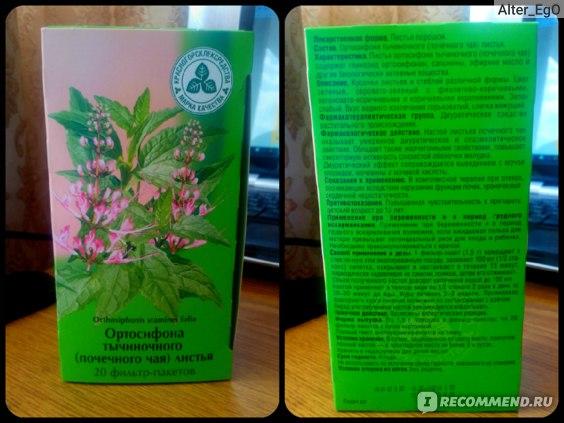 Фиточай КРАСНОГОРСКЛЕКСРЕДСТВА Ортосифона тычиночного (почечного чая) листья фото