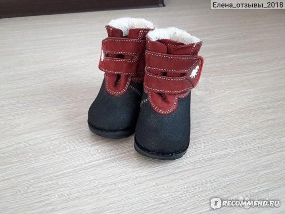 Зимние ботинки Скороход TD11-632-1K фото