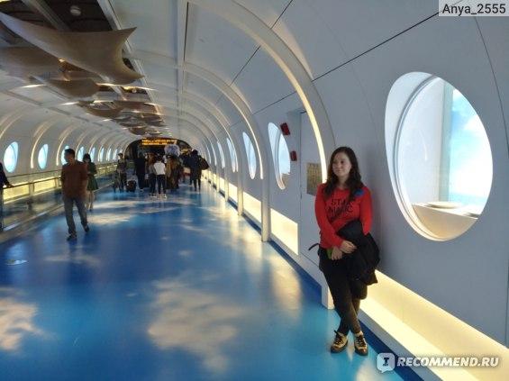 Аэропорт в Гуанчжоу (международный терминал)