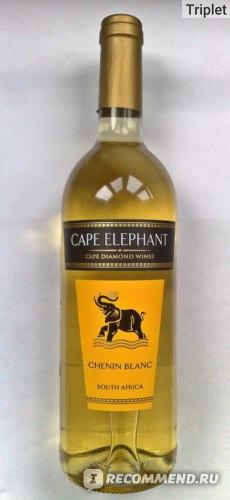 Вино CAPE ELEPHANT CHENIN BLANC (Белое столовое полусухое) фото