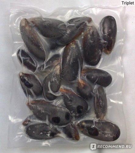 Морепродукты Agama Мидии в створках в собственном соку замороженные  фото