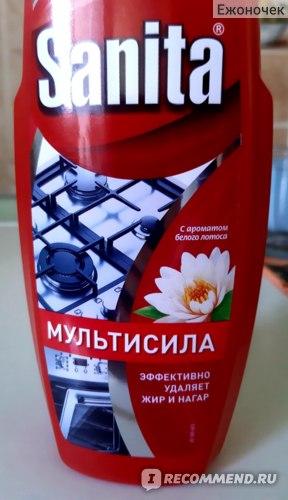 Очиститель  плит , духовок и свч-печей Sanita Гель АНТИЖИР Мультисила  фото
