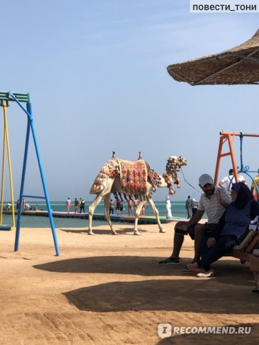 Hawaii Le Jardin Aqua Park 4*, Египет, Хургада фото