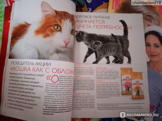 """Журнал """"Коллекция караван историй"""" фото"""