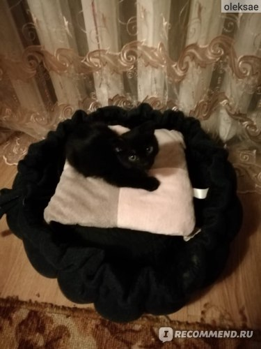 Наполнитель для кошачьего туалета Сибирская кошка Суперкомкующийся фото