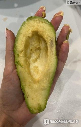 Как выбрать авокадо. Как прорастить авокадо. Что приготовить из авокадо
