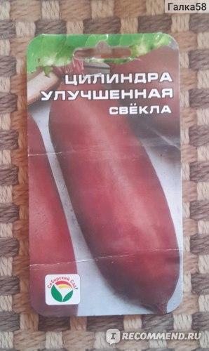 """Семена свекла Цилиндра улучшенная, """"Сибирский Сад"""" фото"""