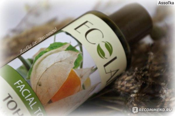 Тоник Ecolab для проблемной и жирной кожи фото