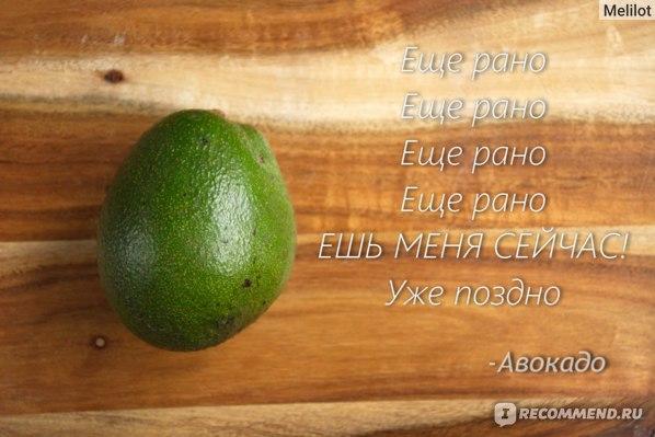 Фрукты   Авокадо фото