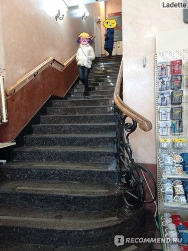 Зингер, Санкт-Петербург фото