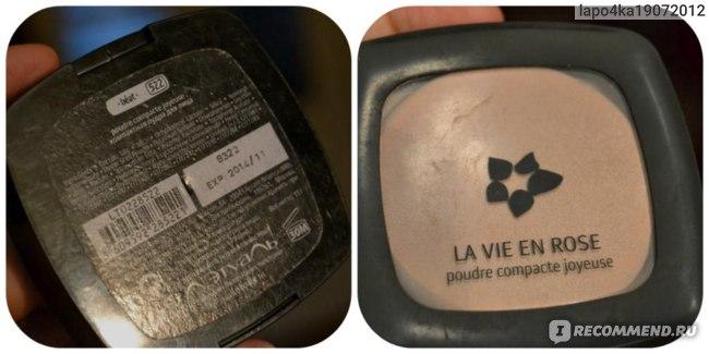 Пудра Л'Этуаль Компактная для лица LA VIE EN ROSE фото