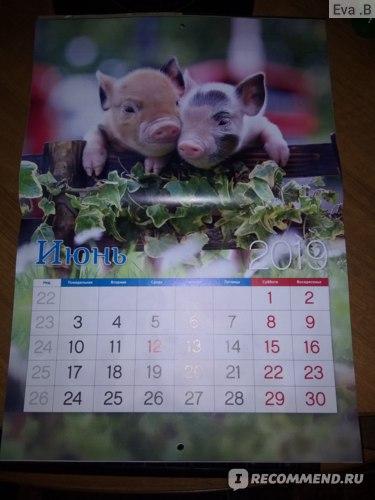 Календарь настенный Fix Price фото