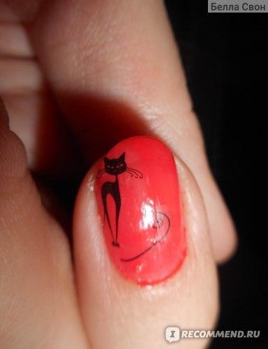 Наклейки для ногтей Aliexpress Бродячие черные кошки фото