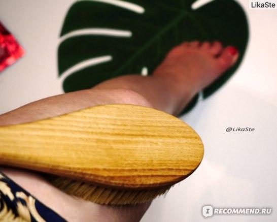 Массажная щетка для тела DIDALI из ВЕПРЯ  фото
