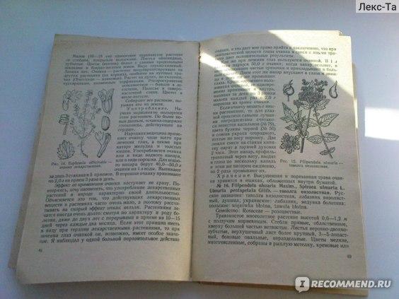 Лекарственные растения в народной медицине. Михаил Носаль фото
