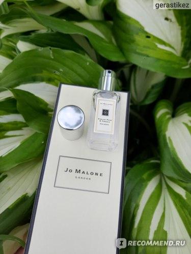 Jo Malone  English Pear & Freesia Cologne фото