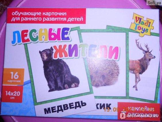 Обучающие карточки Vladi Toys Лесные жители фото