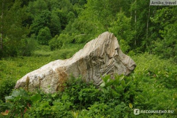 Камень-лев