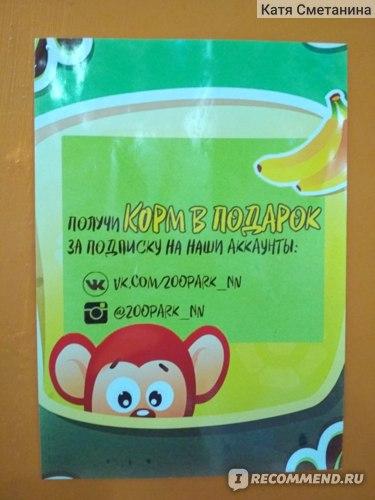 """Контактный зоопарк """"Трогай, гладь, корми!"""", отзыв"""