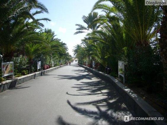 Испания - остров Gran Canaria фото