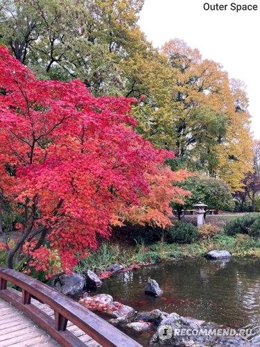 Японский сад в Вене