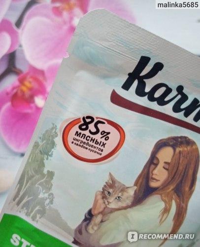 """Корм для кошек Karmy STERILIZED влажный """"Курица в желе"""" для взрослых котов и кошек старше 1 года фото"""